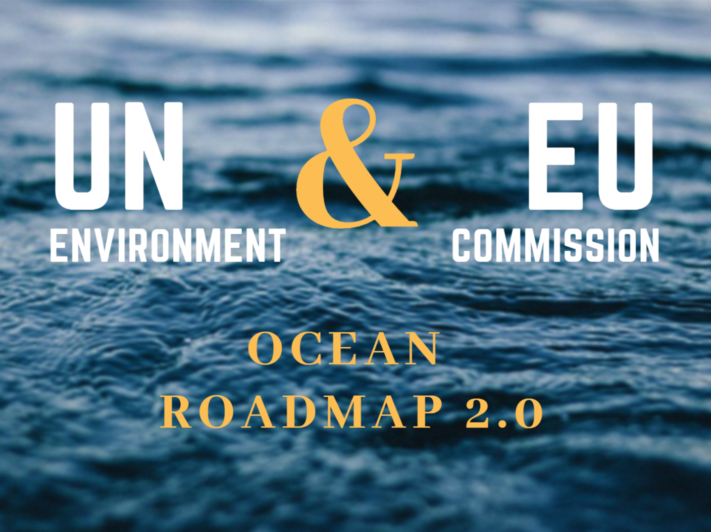 UN Environment and European Commission roadmap